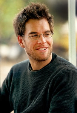 786c4192eb5740870b374f67958e7e3e--michael-weatherly-eye-candy.jpg
